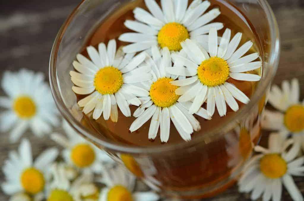 tazza di camomilla con fiori all'interno